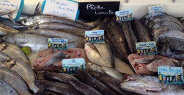 enquête sur le poisson pané